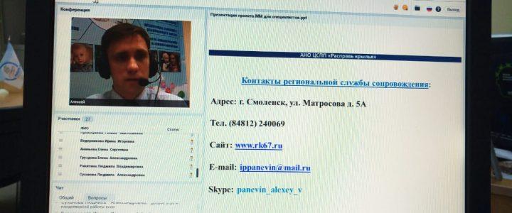 Cостоялся вебинар-презентация проекта «Маленькая мама» для специалистов